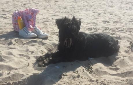 Gwenda am Strand